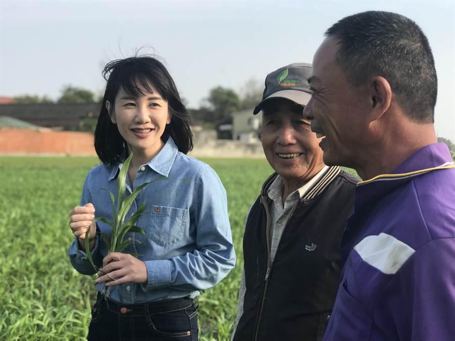 選區內多數是農村,謝衣鳳與許多務農的長者互動零距離。(謝衣鳳服務處提供)