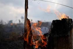 被忽視的中非野火 祝融或將肆虐全球第二大雨林