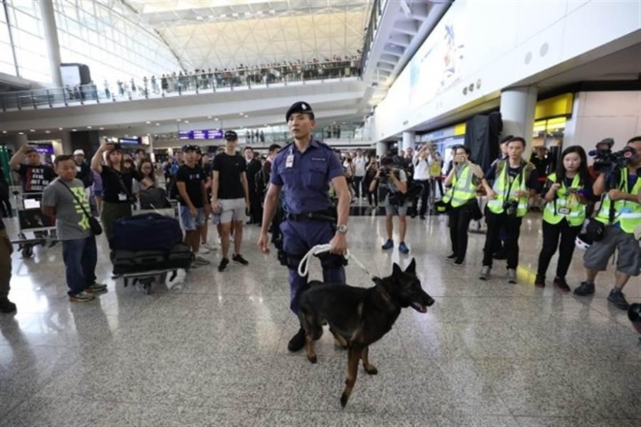 香港機場內警犬出動。(東網)
