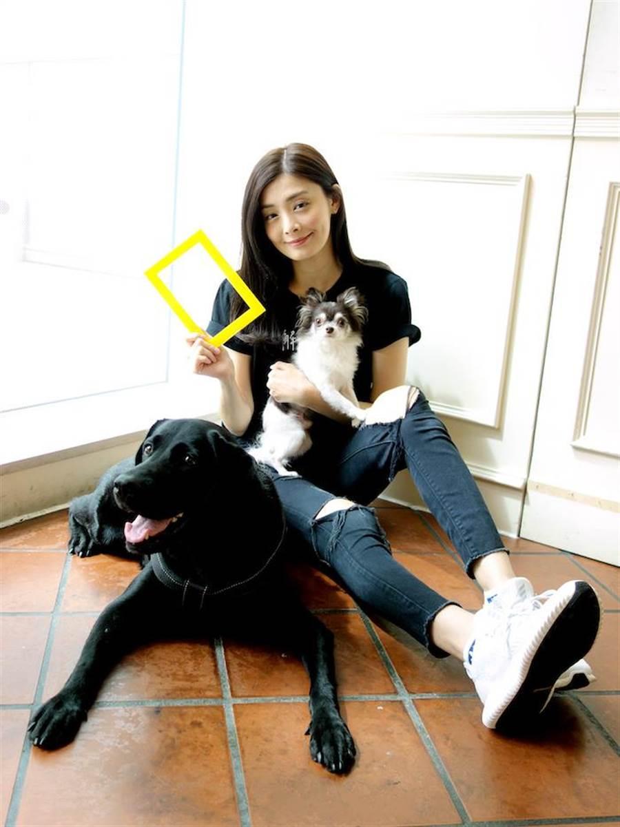 夏如芝感染自家老爸,一家都變成愛貓人士。(國家地理頻道提供)