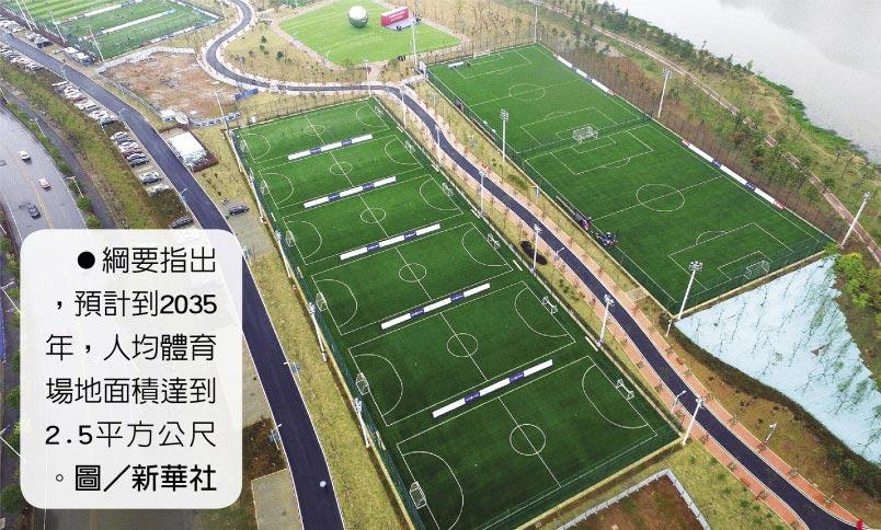 綱要指出,預計到2035年,人均體育場地面積達到2.5平方公尺。圖/新華社