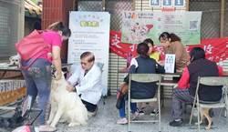 保護毛小孩健康 台中狂犬疫苗、晶片巡迴注射開跑