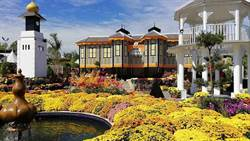 皇家花卉節開鑼 馬來西亞觀光局盼台灣客赴布城旅遊