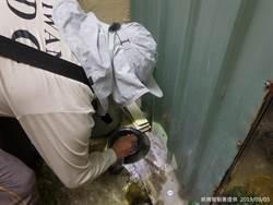 台南市1日2例本土登革熱 新增1處疫情熱點