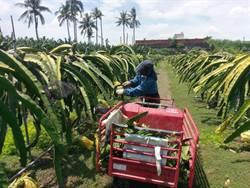 農委會核定22外展機構 10月引進農業移工