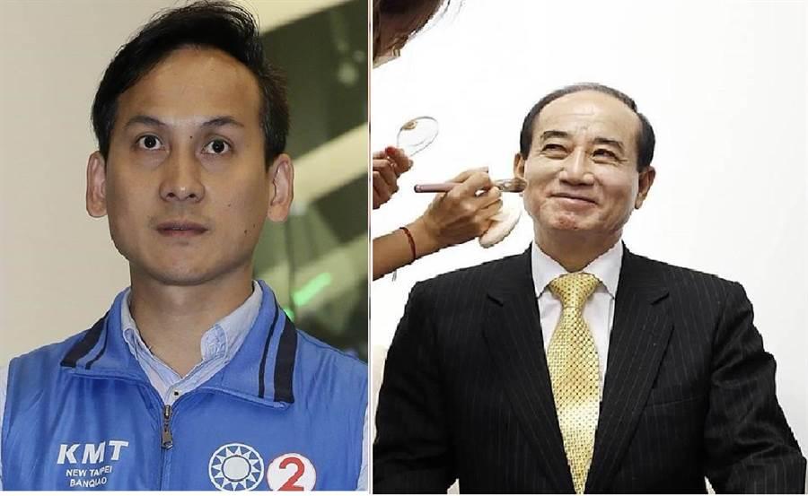 國民黨新北市議員葉元之(左)、前立法院長王金平(右)。(圖/合成圖,本報資料照)