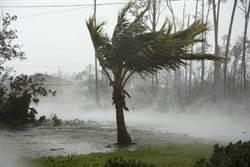 颶風多利安狂襲!竟吹來百萬黑鑽石