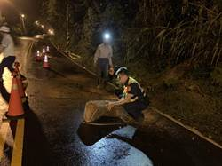 鋸樹截段 警民合力排除樹倒路障
