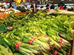 8月CPI年漲0.43% 豪雨蔬菜漲14.56%最多