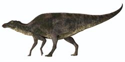 日本科學家發現新種恐龍「神威龍」