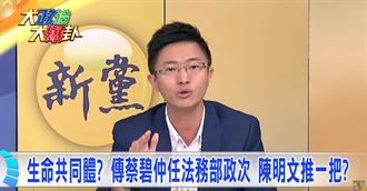 生命共同體 傳蔡碧仲任法務部政次 陳明文推一把?
