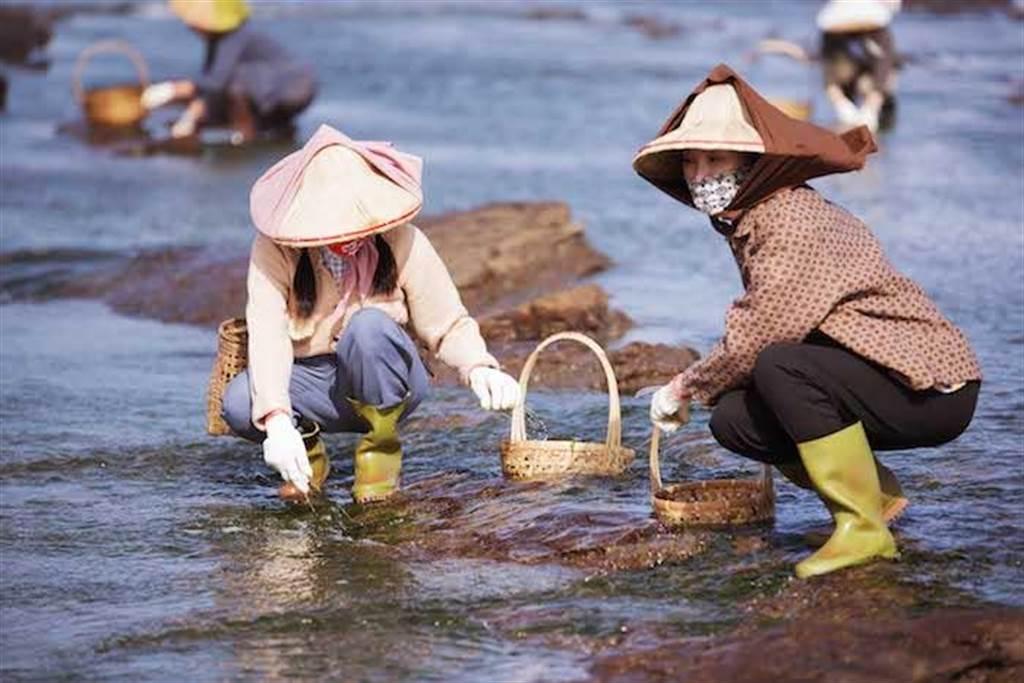 張瓊姿(右)與親生女兒郭思瑜(左)冒險在風浪極大的海邊拍攝採海菜戲。