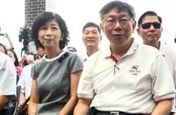 陳佩琪諷民進黨:選舉靠抹紅、前瞻、旅遊補助
