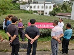 茶改場推動減施技術 可少用3成農藥
