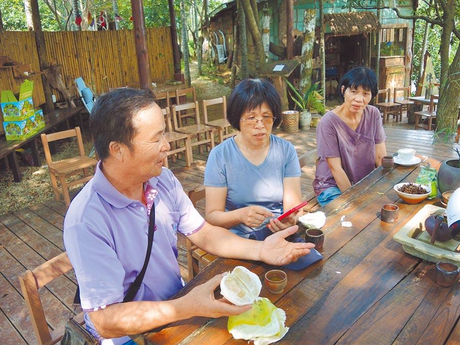 龍潭區三和里居民因手機通訊不佳,只好在樹下泡茶聊天、順便聯繫感情。(邱立雅攝)