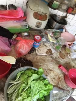 婆家幾十年沒清廚房 她PO照求救...網驚:全丟