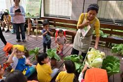 餐桌食物何處來? 興大有機市集帶幼兒見識蔬菜成長