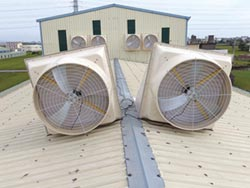 晉有變頻DC馬達 負壓風扇更省電