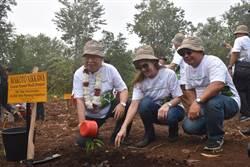 《產業》亞洲漿紙連6年辦植樹日,共同復育受損森林