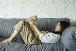 蔡健雅樂當宅女 躺沙發玩貓噴母愛