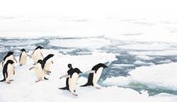 陸首艘極地郵輪交付 10月南極見