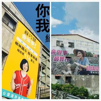 蘇巧慧、邱議瑩等綠委看板曝光 網譏:沒這個