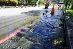 谷關街道冒湧泉?竟是管線阻塞水溝排水