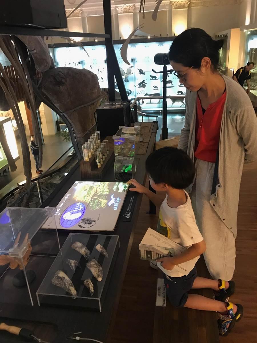 由石尚企業規畫展示的國台博土銀展示館,也是許多家長帶著小孩子同遊的好去處。(陳俊雄攝)
