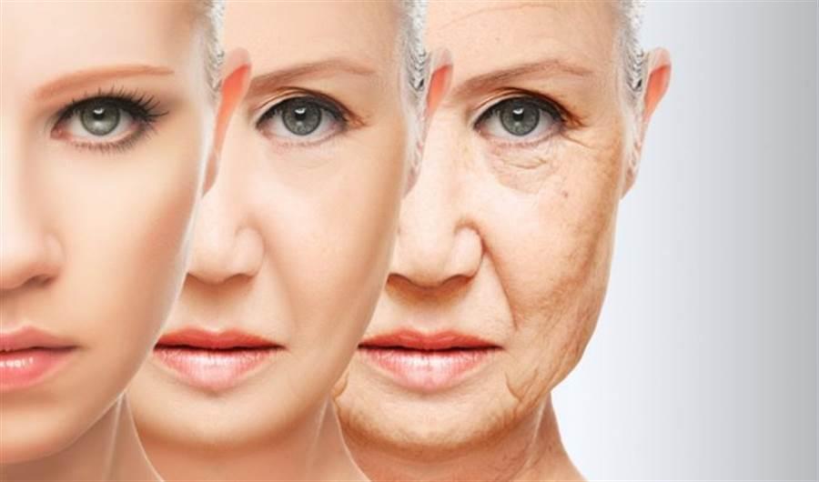 一項研究認為,透過生長激素再生胸腺,可以逆轉衰老。(圖/nextbigfuture)