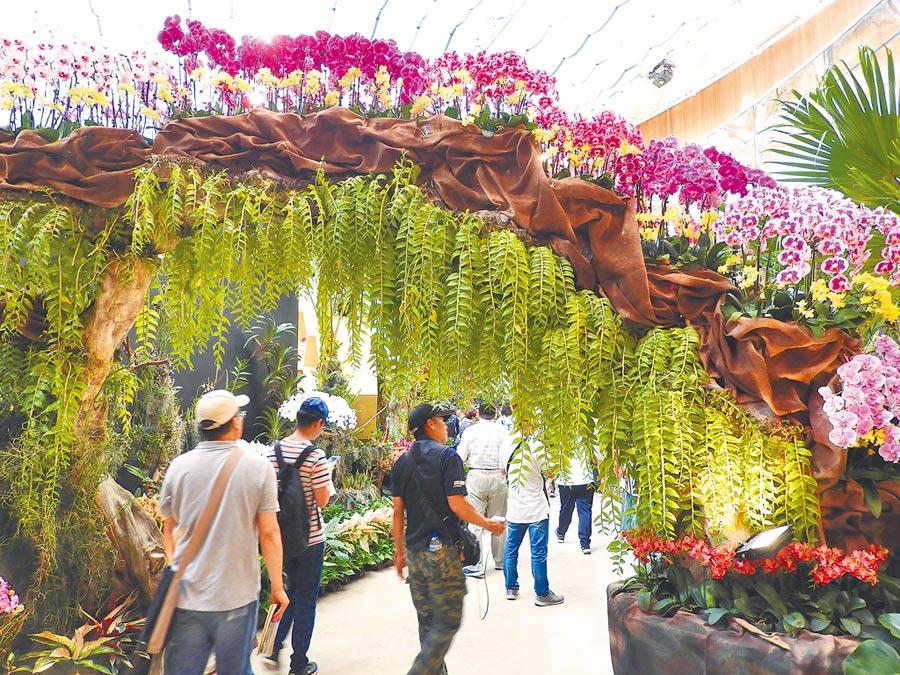 2020世界蘭花會議暨展覽,將於舉辦世界花卉博覽會的外埔園區,規畫不同的主題展覽。(陳世宗攝)