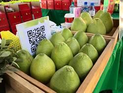 三重果菜批發市場中秋節照常營業 柚子價格飆蔬菜微漲