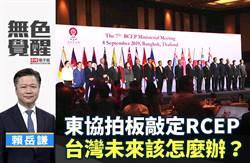 無色覺醒》賴岳謙: 東協拍板敲定RCEP 台灣未來該怎麼辦?