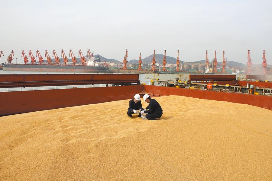 山東日照檢驗檢疫局工作人員在抽檢來自美國的進口大豆。(新華社資料照片)