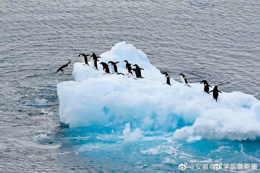 赴南極長城站展開旅遊活動申請指南發布,遊客要做出安全、環保、責任自負的書面承諾。(取自新浪微博@頭條新聞)