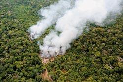 保護亞馬遜 美巴投入1億美元