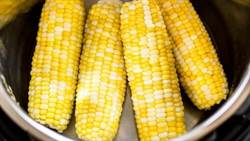 玉米助便秘!營養師曝還有五大好處