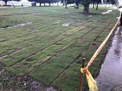 韓營三重造勢 新北市政代為執行植草皮