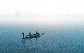 螃蟹券橫行 風險比陽澄湖還深