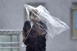 法西颱風災情慘 日本撥近4億元救災