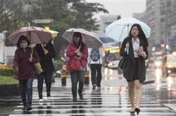 低溫下探24度!周三北、東雨 南部午後雷雨