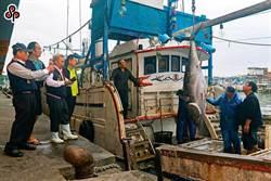網路扭曲鮪魚價差 漁業署移請警方調查