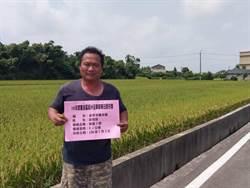 台灣稻米達人冠軍賽 桃園3人進入第2階段