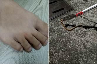 他求解這是什麼蛇?網友看照片怒了