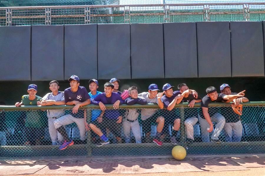 北市大棒球隊將到體表會演出。(體育署提供)