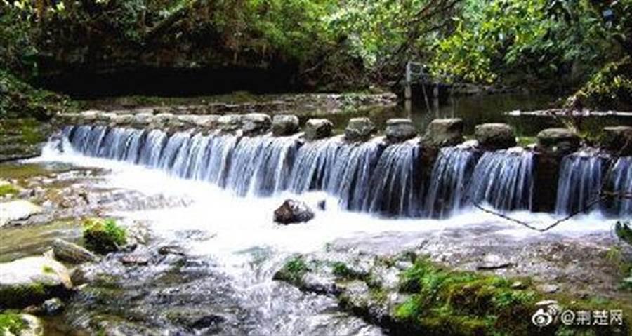 湖北五峰後河國家級自然保護區屬於武陵山森林步道。 (取自新浪微博@武漢發布)