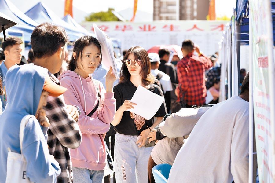 2019年8月20日,求職者在拉薩招聘會瀏覽招聘單位簡介。(新華社)