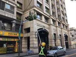 強風來襲不要怕 中市府迅速清理35株路樹