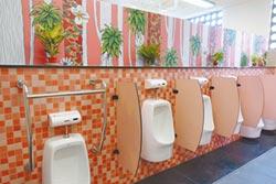 舊髒異味廁所整型 變身童話屋