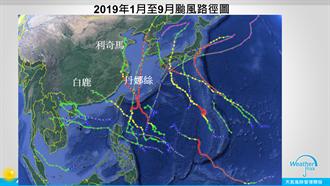 今年颱風怎麼又哈日了?他揭台有金鐘罩