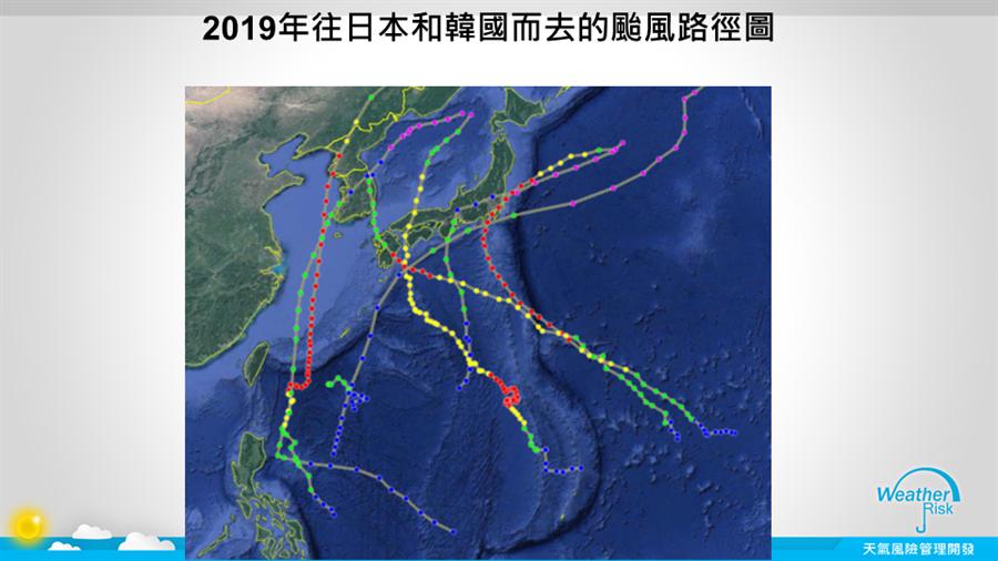 2019年往日本韓國的颱風路徑圖。(圖擷自天氣風險管理公司)
